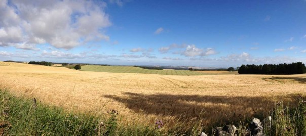 No self-build plots enjoying East Lothian's views - Ogilvy Chalmers
